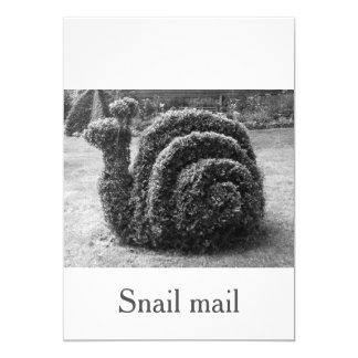 Snail mail unique and original black & white card