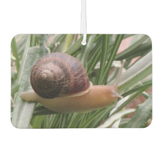 Snail on a Leaf Air Freshener