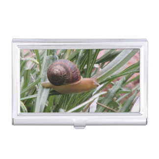 Snail on a Leaf Business Card Cases