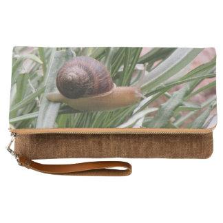 Snail on a Leaf Clutch