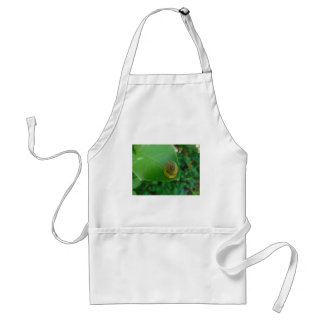 Snail on a magnolia leaf standard apron