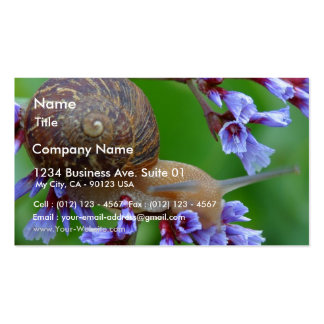 Snail On Flowers Business Card Template