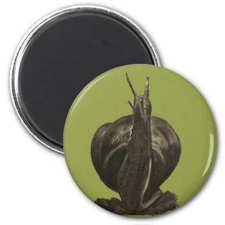 Snail Pastels  Drawing Round Magnet