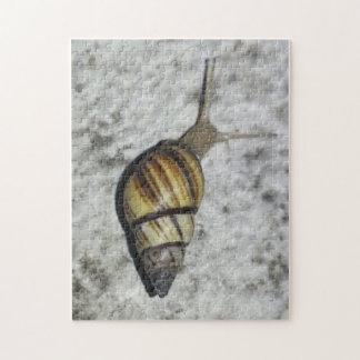 Snail poster puzzle