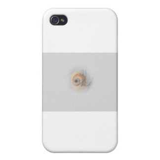 snail Schnecke Muschel Shell iPhone 4/4S Cover