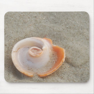 Snail shell mousepad