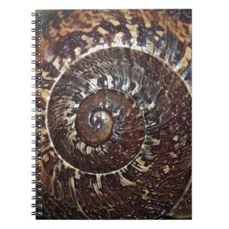 Snail Shell Spiral Notebook