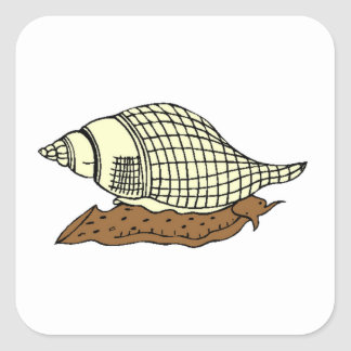 Snail Shell Square Stickers