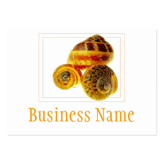Snail Shells Business Card