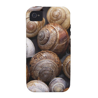 Snail Shells Vibe iPhone 4 Case