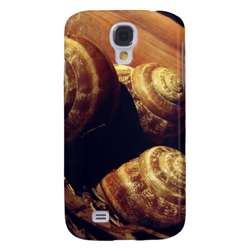 Snail Shells HTC Vivid Cover