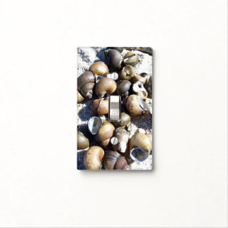 Snail Shells Switch Plate Covers