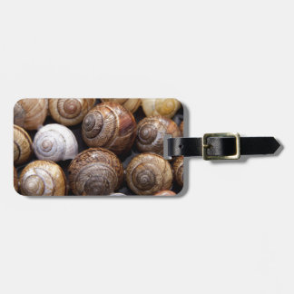 Snail Shells Luggage Tags