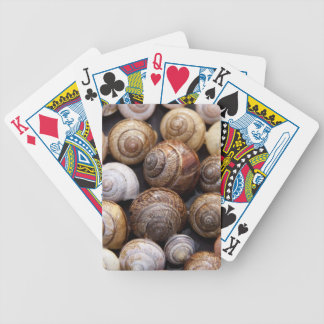 Snail Shells Bicycle Poker Cards