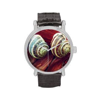Snail Shells Watches