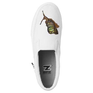 snail shoe