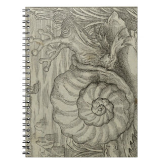 Snail Spiral Note Book