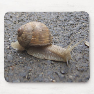 snail walk mousepad