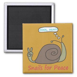 Snails For Peace Magnet