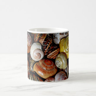 Snails from a French garden Mug
