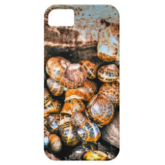 Snails gathered together in a tree stump iPhone 5 covers