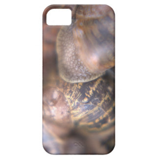 Snails iPhone SE + iPhone 5/5s Case