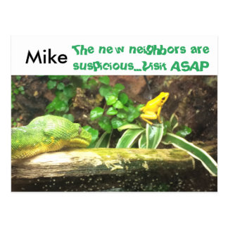 Snake and frog funny new address postcards