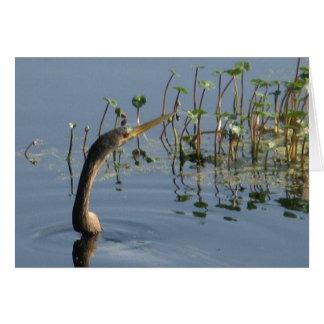 "Snake bird ""thinking of you"" card"