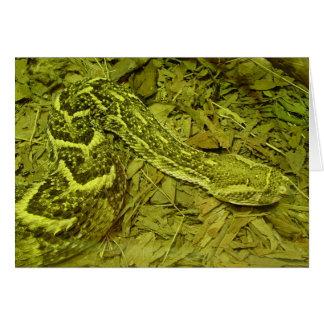 Snake! Greeting Card