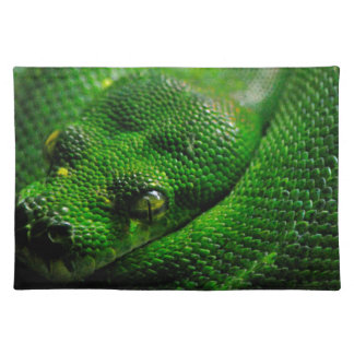Snake Country Placemat