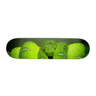 Snake Eyes Skate Decks