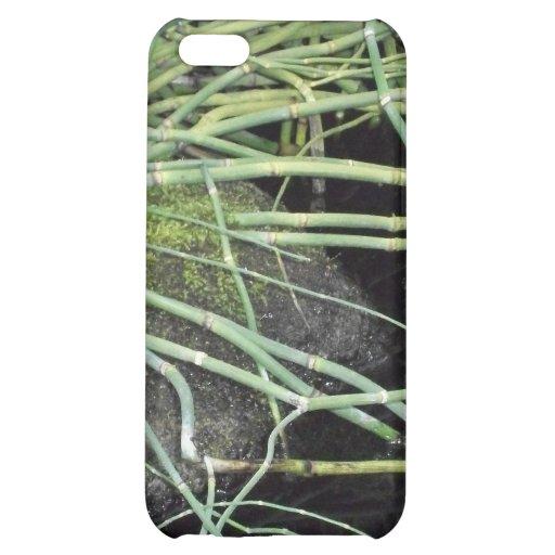 Snake Grass Print - Nature Series iPhone 5C Case
