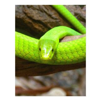 Snake Green Mamba Animal Scary Party Destiny Letterhead Template