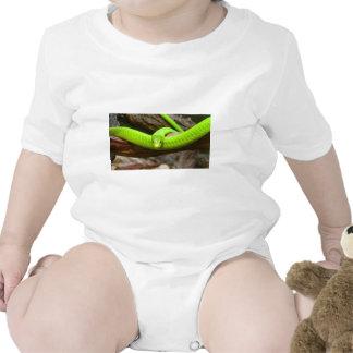 Snake Green Mamba Animal Scary Party Destiny T-shirt