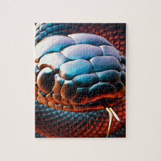 Snake head puzzles