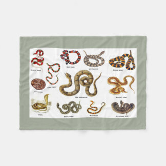 Snake Identification Blanket