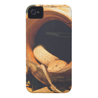 Snake in a Pot iPhone 4 Covers