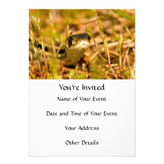 Snake in the Grass Personalized Invite