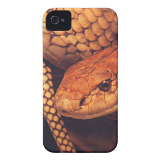 Snake iPhone 4 Case-Mate Case