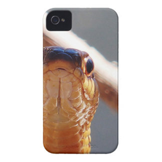 snake iPhone 4 Case-Mate cases