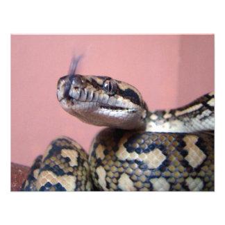 Snake Kiss Custom Invite