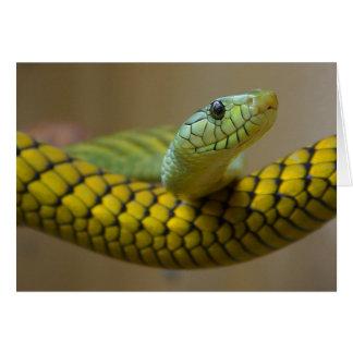 Snake Reptile Card