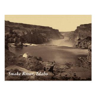 Snake River Soshone Falls Idaho Vintage Postcard