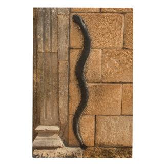 Snake Sculpture At Amna Suraka Wood Wall Art