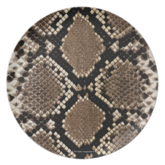 Snake Skin Plate