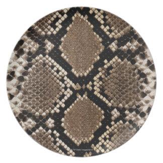 Snake Skin Plates