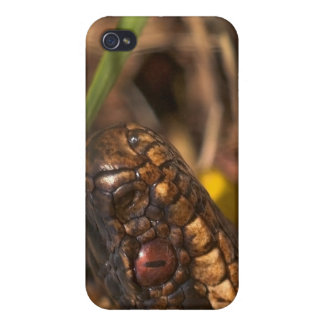 Snakes Head iPhone 4/4S Case