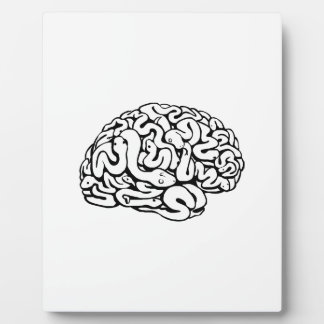 Snakes on a brain plaque
