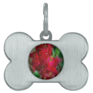 Snap Dragon Pet ID Tag