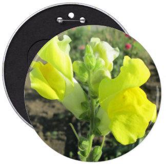 Snapdragon Yellow Flower 6 Inch Round Button